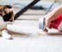 Best Carpet Spot Cleaners for Old and New: Buyer's Guide for 2020 and Leading Products