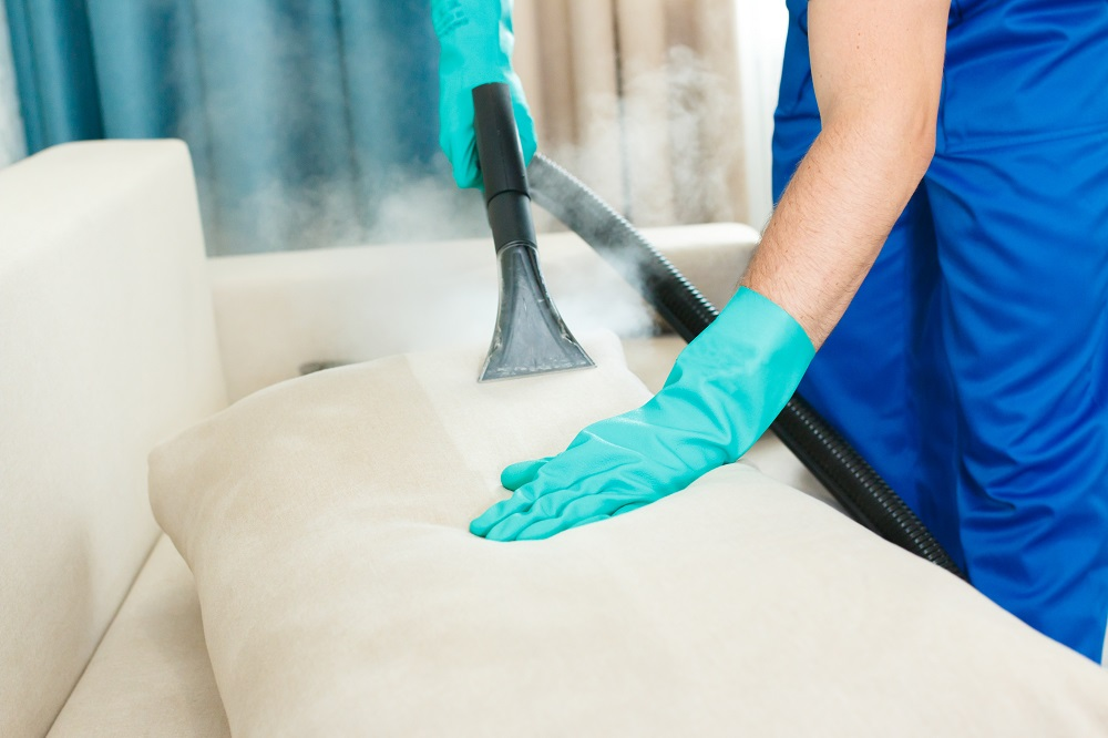 cleaning the couch